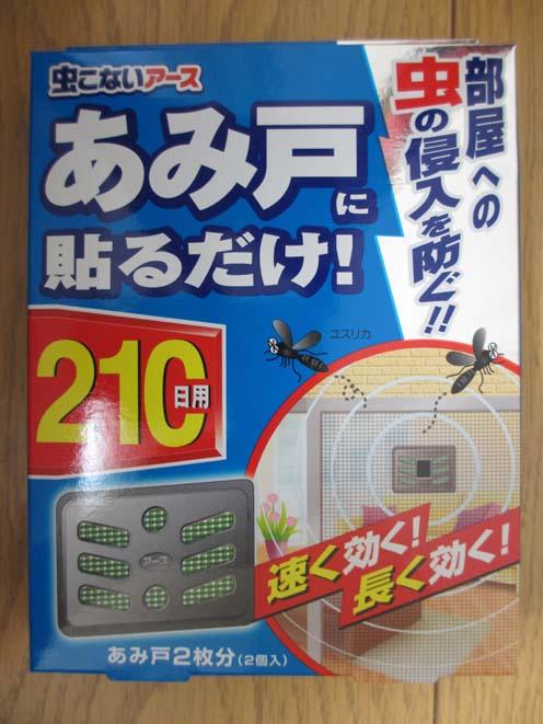 1 虫IMG_2969.jpg