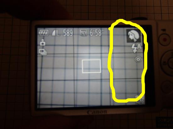 ixy4P9290488.jpg